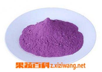 果蔬百科紫薯粉